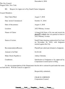 Icon of #11 Christina - Small Claims Settlement