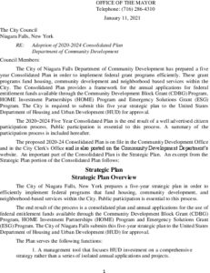 Icon of #3 Community Development Plan