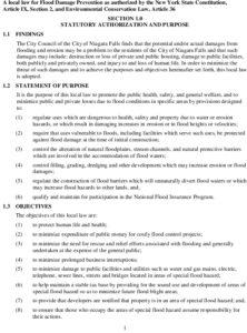 Icon of #11a Niagara Falls NY 360506 Flood Damage Prevention Local Law DRAFT